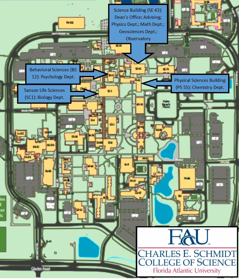 College Of Science Contact Page Florida Atlantic University