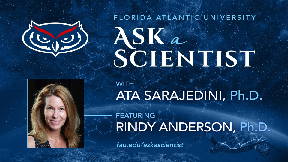 ask a scientist rindy